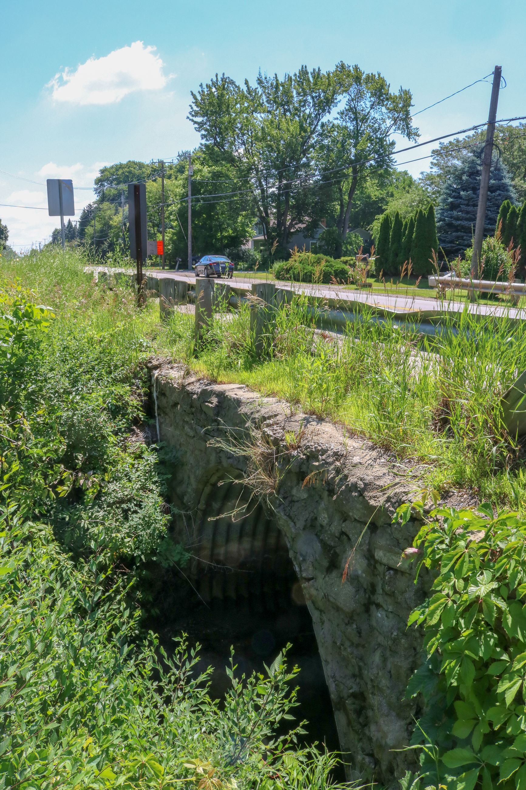 Old Ferry Creek Culvert (7)