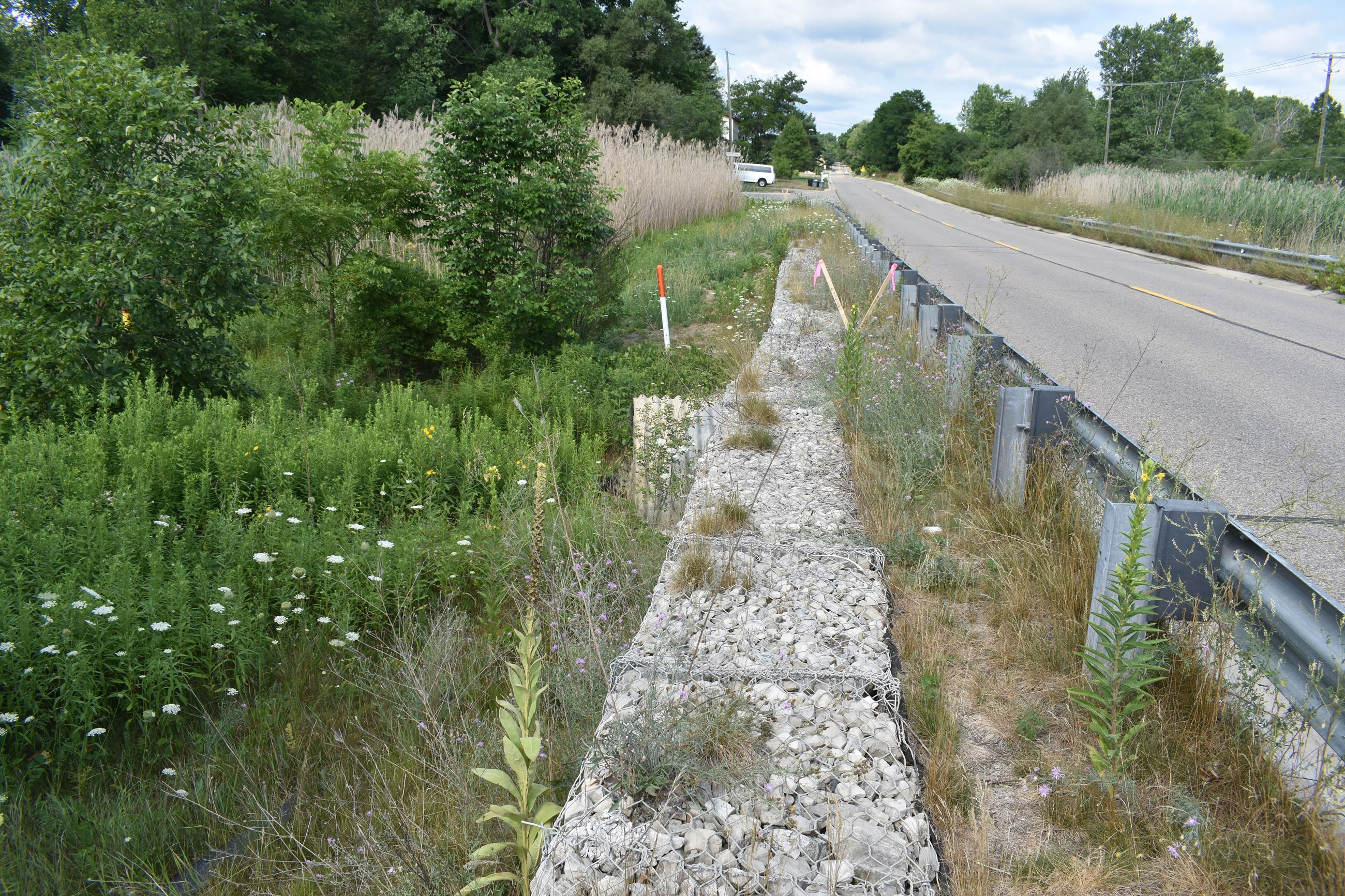 Cooley Lake Road surface and guardrail over culvert